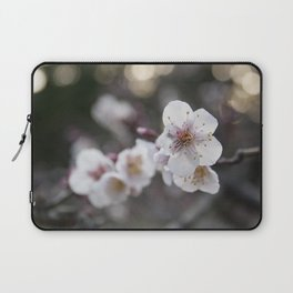 The Early Cherry Blossom Laptop Sleeve