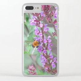 Bee on a Caradonna flower Clear iPhone Case