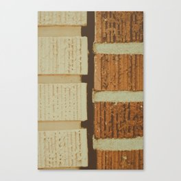 brick split Canvas Print