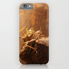 Insects Mate iPhone 6s Slim Case