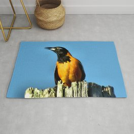 Melody Of Freedom Rug