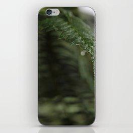 A Single Drop of Dew iPhone Skin