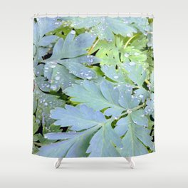 Dew Drops on Leaves Shower Curtain