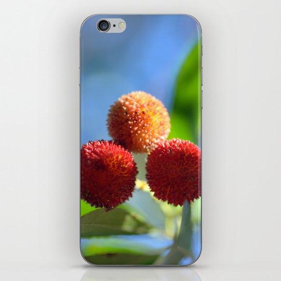 Strawberry tree fruits 8697b iPhone & iPod Skin