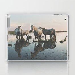 Camargue Horse II Laptop & iPad Skin