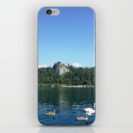 Swans in Bled iPhone Skin