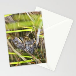 Toad in the pond Stationery Cards