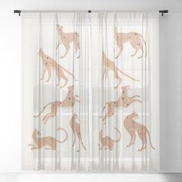 Cheetah Spot Sheer Curtain