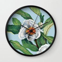 Franklin tree flowers Wall Clock
