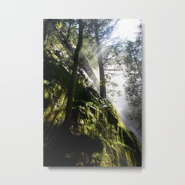 """Good Timber"" Metal Print"
