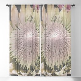 The Native Banksia Sheer Curtain