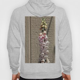 foxgloves against a garden shed Hoody
