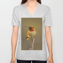 Heavenly Hummingbird by Reay of Light  Unisex V-Neck