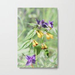Bright meadow flowers. Metal Print