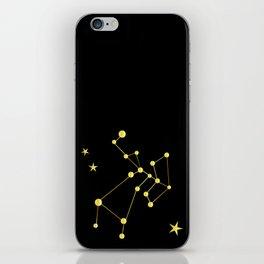 Sagitarius iPhone Skin