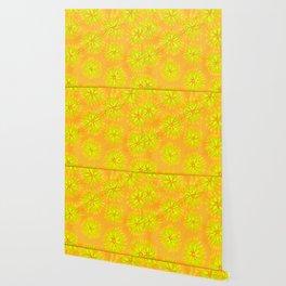 Orange Crush Petal Rose Wallpaper