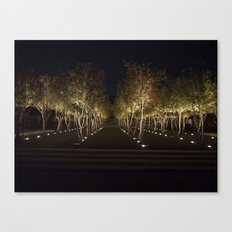 Trees By The Kimbell Canvas Print