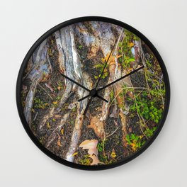 tree roots with green leaves plant on the ground Wall Clock