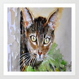 The Curious Tabby Cat Art Print