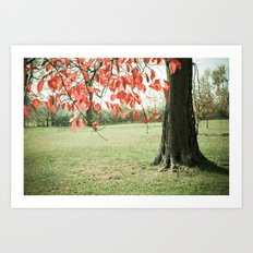 Autumn Red Art Print