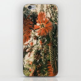 Winter Mood Florals Photography iPhone Skin
