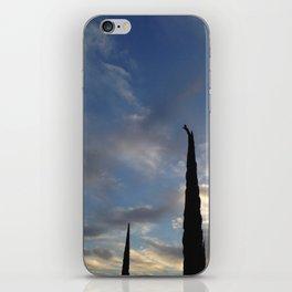 Hawk-ward iPhone Skin