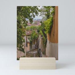 Steps in Old Town Lyon, France Mini Art Print