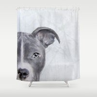 pit bull Shower Curtains featuring pit bull silver grey tone  by MiartDesignCreation