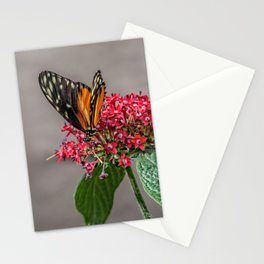 Tiger Longwing Stationery Cards