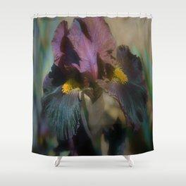 velvet iris Shower Curtain