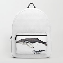 North Atlantic Humpback whale with calf Backpack