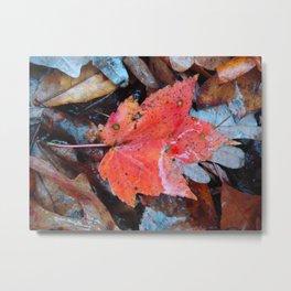 autumnal reverie 646 Metal Print
