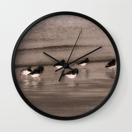 Oyster Catchers Wall Clock