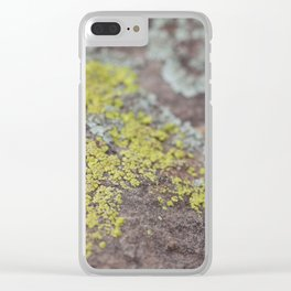 Colors on Rocks Clear iPhone Case