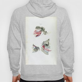 Vintage Anatomy of the Human Mouth and Tongue Hoody