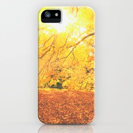 New York City Autumn Sun iPhone Case