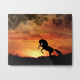 Sillouette Stallion Metal Print