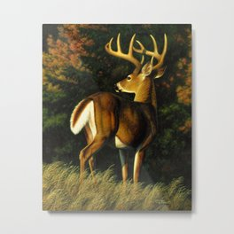 Whitetail Deer Trophy Buck Metal Print