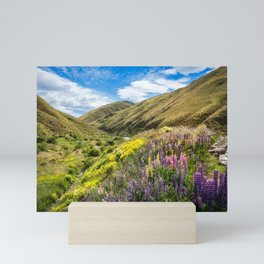 Lupines fields on the side of the road in New Zealand Mini Art Print