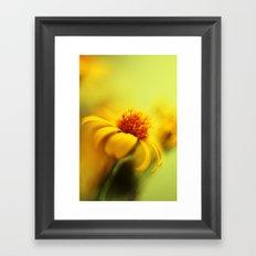 Bring Me Sunshine Framed Art Print