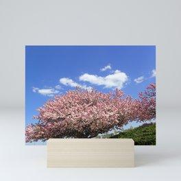pink flowering tree Mini Art Print