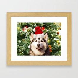Santa Hat Siberian husky Christmas Tree Snowman Gift Box Framed Art Print