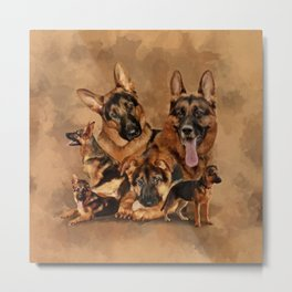 German Shepherd Dog - puppy, young, adult Metal Print