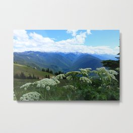 Olympic Mountains from Hurrican Ridge Metal Print
