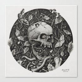 Vernal Decay Canvas Print