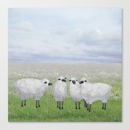 sheep in a field Canvas Print