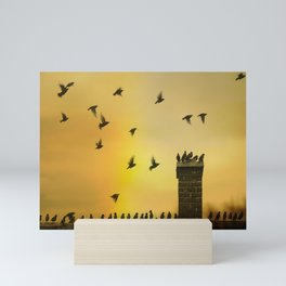 Rooftop Birds Mini Art Print