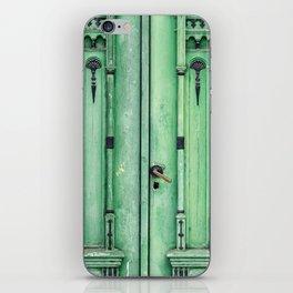Green Door iPhone Skin