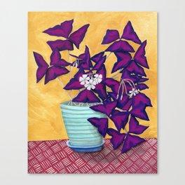 Purple Shamrock Houseplant Painting Canvas Print