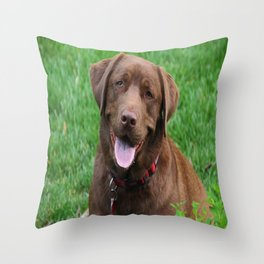 Henry's Waiting Throw Pillow